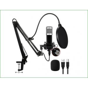 Micrófono de soporte conjunto completo